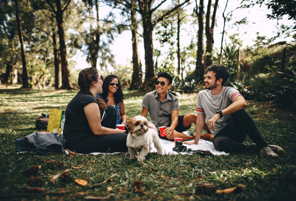 2 guys and 2 girls with one dog having a picnic